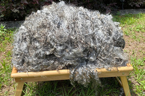 Gotland Lamb Wool - Full fleece