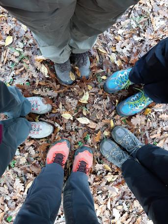 Varietà di scarpe
