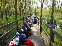 Children studying nature