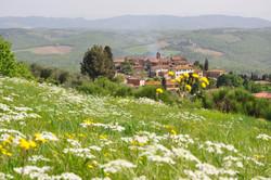 Vagliagli - Chianti hills