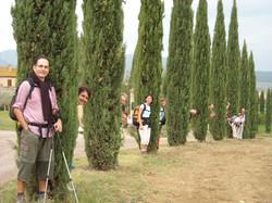 Cipresseta di Sant'Agnese