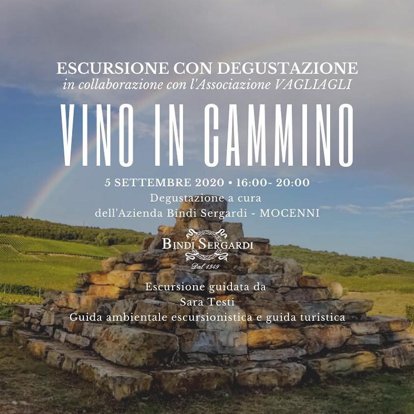 VINOinCAMMINO - BINDI SERGARDI