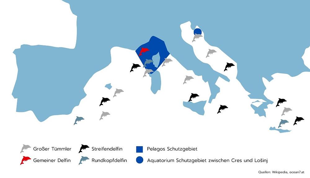 Delfin Landkarte Mittelmeer - wo ist welche Gattung zu finden?