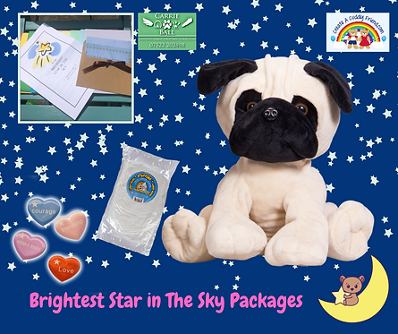 Brightest Star In The Sky Package - Pandy The Pug