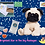 Thumbnail: Brightest Star In The Sky Package - Pandy The Pug