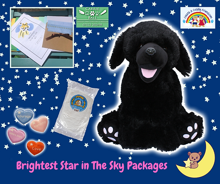 Brightest Star In The Sky Package - Shadow The Black lab