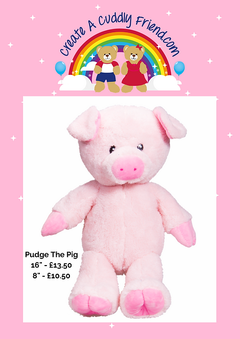 Pudge Pig 16 Inch Create A Cuddly Friend Package