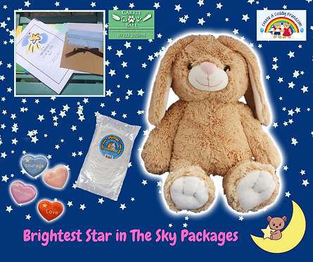 Brightest Star In The Sky Package - Flopsy the Brown Bunny