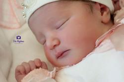 DSC_dogum-bebek-fotograflari-eda-akyilmaz-0177.jpg