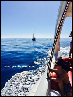 www.opera60tenerife.com
