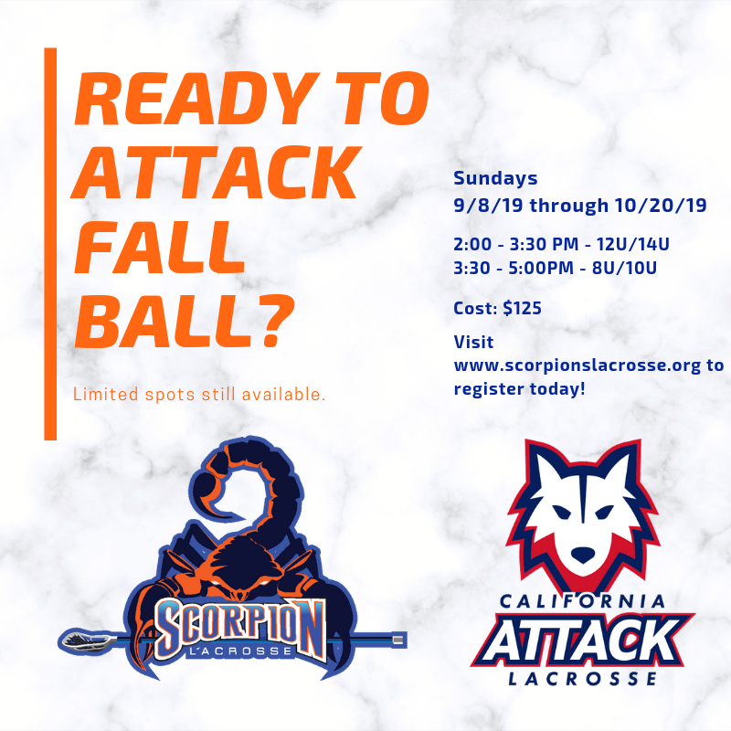 READY TO ATTACK FALL BALL_ (1).png