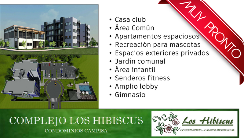 Muy pronto hibiscus.png
