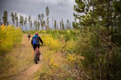 Local Bike Trails