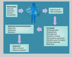 What Brain Wellness Best Practices Do
