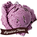 graeters_signature_black_raspberry_chip.