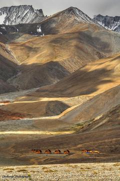 Log Huts Pangyong