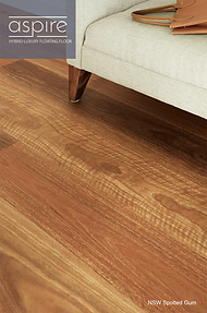 ASPIRE nsw spotted gum.png