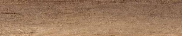 Monument Oak.jpg