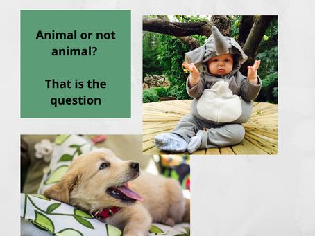 Les animaux de compagnie, bébé et hygiène