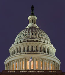 Image of the U.S. CapitolDome
