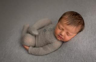 Sarasota Newborn Photographer