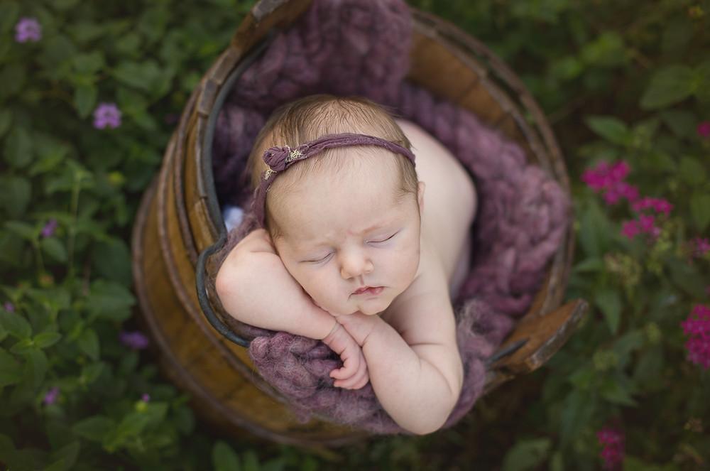 newborn baby in bucket, sarasota florida