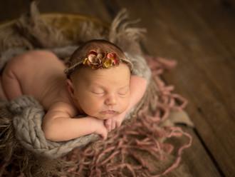 Lindsay Marie Photography - Sarasota Newborn Photographer