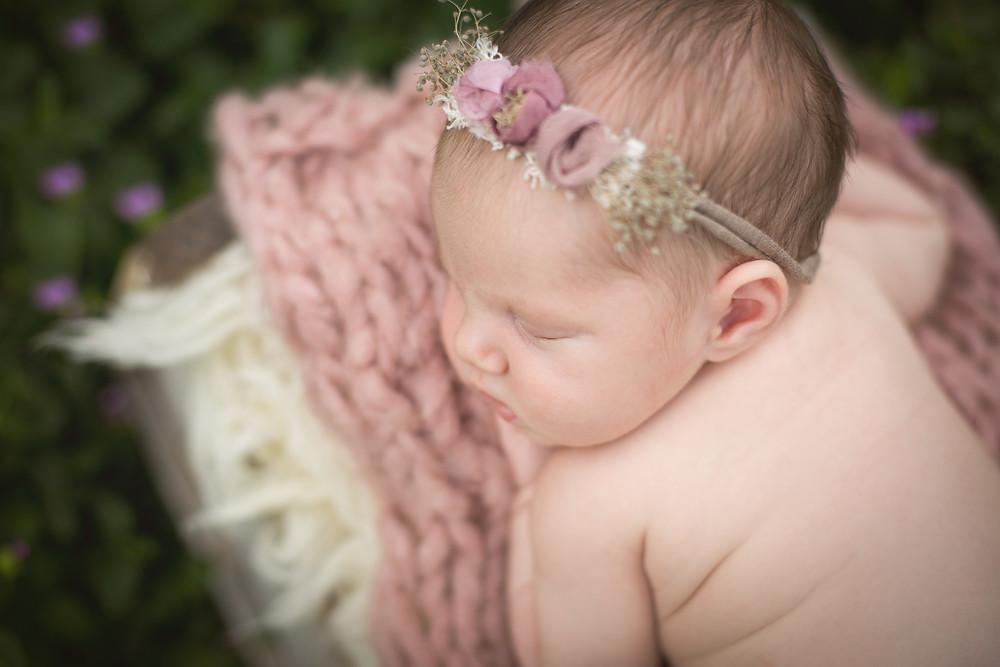 Sarasota, Florida Newborn Photographer