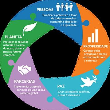 cinco-ps-sustentabilidade-ozires-silva.p