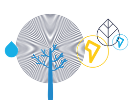 relatorio-sustentabilidade-ilustracao-01