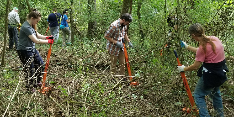 Weed Warriors Public Workday at Grayson Subaru Preserve 10/23/21 (REGISTRATION REQUIRED)