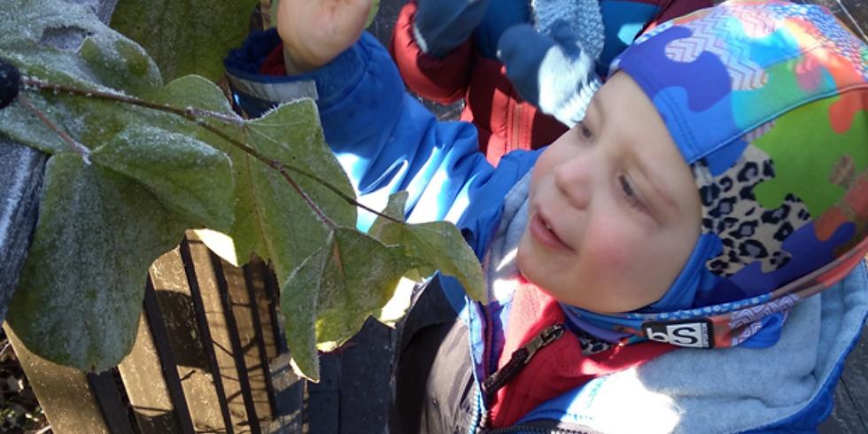 Virtual Open House: Ijams Nature Preschool & Ijams Nature Play Club