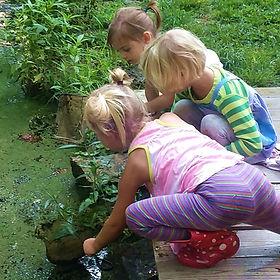 Ijams Nature Preschool children dipnetting in pond