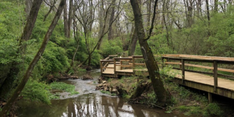 Creek Walk (Family Programs)