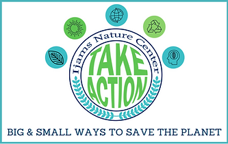 Big & Small Ways to Save the Planet 6.8x