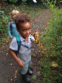 Ijams Nature Preschool child looking at flowers on trail