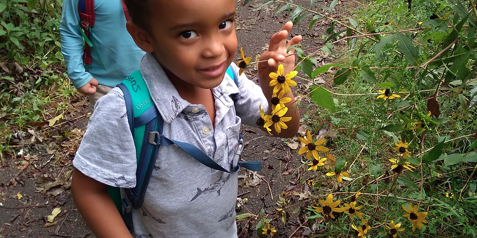 Ijams Nature Preschool & Play Club ZOOM Open House