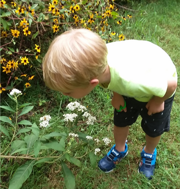 Child Smelling Flowers.png