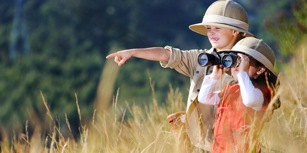 Ijams Insect Safari (Youth & Family Programs)