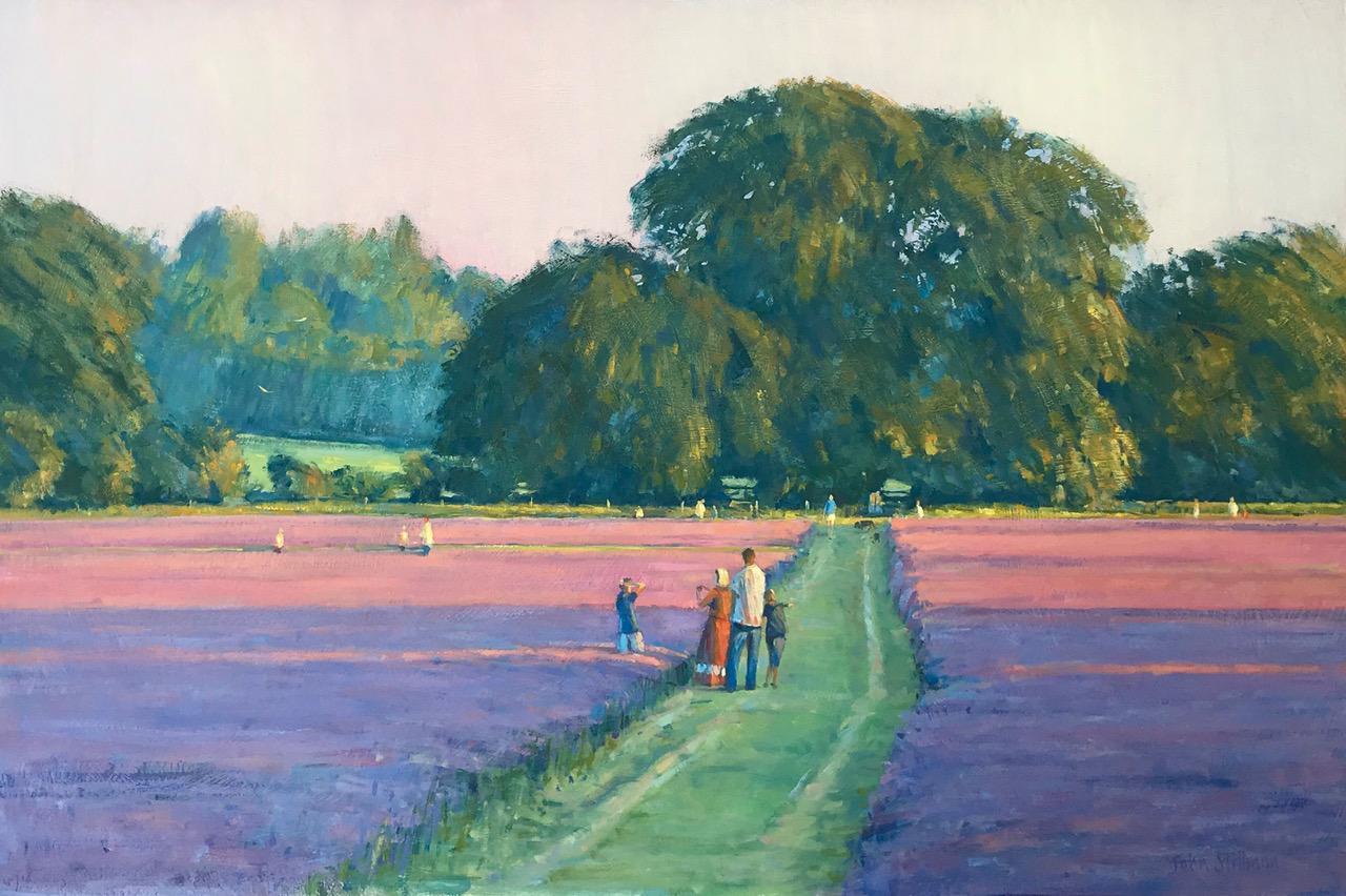 John Stillman 'Evening at the lavender f