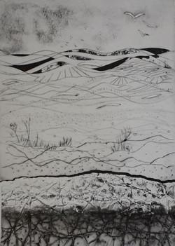 1 Across the Valley - Maggie Penton.JPG.