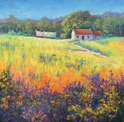 Teresa Allen Spring Field