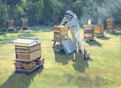 John Stillman 'The Beekeeper'