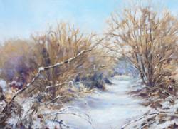 Julie Curry snow