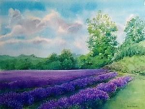 Tessa Spanton 4. Mayfield Lavender T Spanton