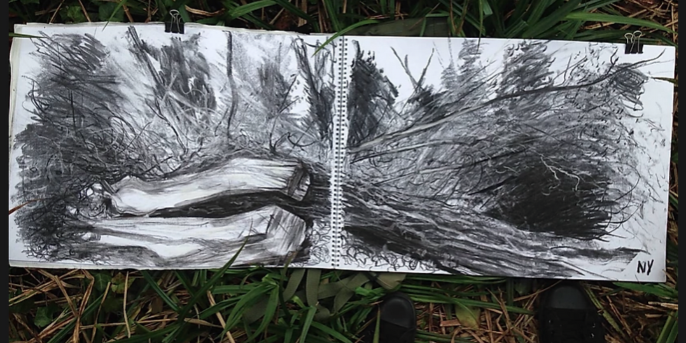 Drawing The Landscape: Charcoal with Neal Vaughan