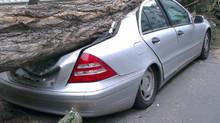 ¿Cuál es el mejor seguro para mi auto? Artículo independiente.