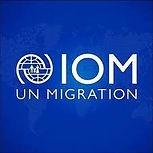 logo INTERNACIONALNA ORGANIZACIJA ZA MLA