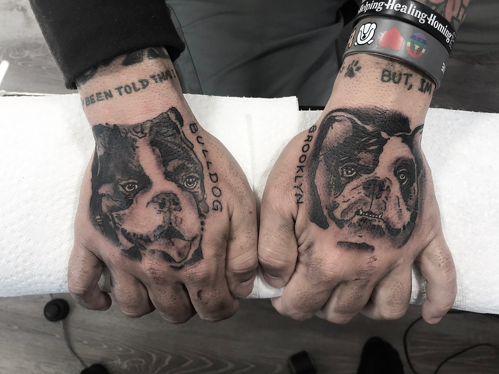 bull dog tattoo