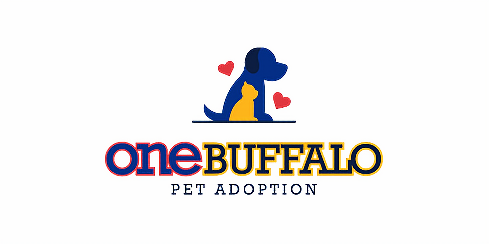 One Buffalo Adoption Event